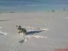 winterspaziergang14.jpg